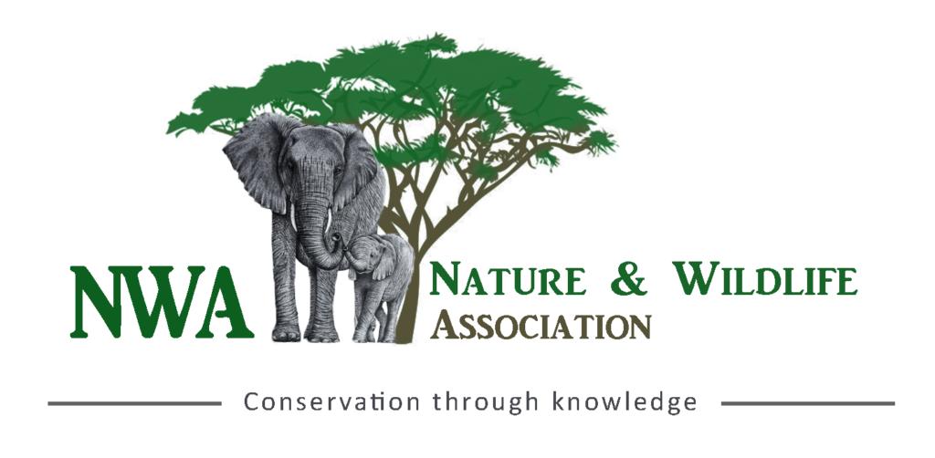 logo_NWA_thailand_cropped